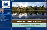 Introducing the Forest Carbon Index