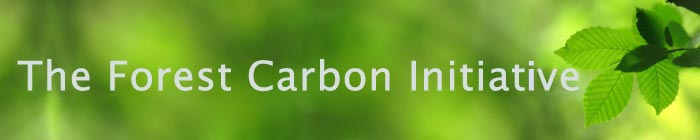 Forest Carbon Initiative banner