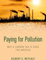 paying for pollution metcalf book cover