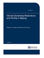 Cover%20of%20RFF%20Rpt-Vehicle%20Ownership%20and%20Fertility_Beijing.png