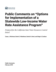 public comments wichman Cover.png