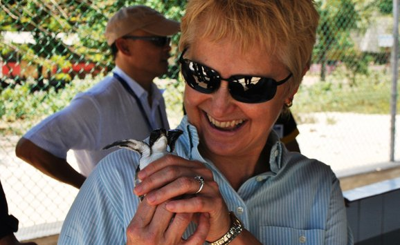 Elaine Dorward King with baby sea turtle