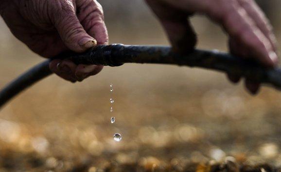 200 drought crop