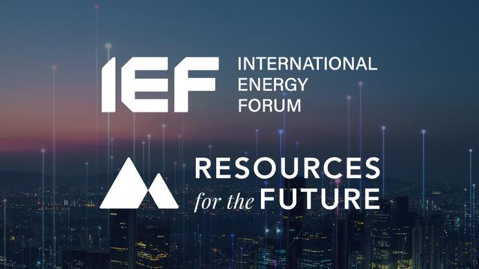IEF RFF-01.png