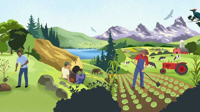 Land use illustration_Michael Crampton