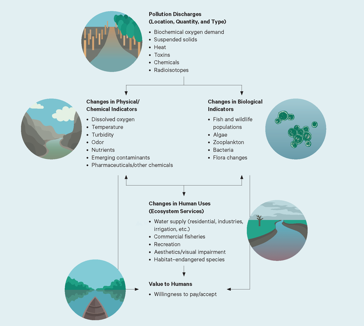 Schematic of the Components of the Social Cost of Water Pollution