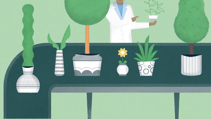 Plant inspections_hero image