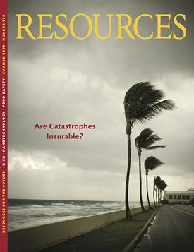 RFF-Resources-172_web.png