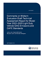 RFF-Rpt-MidtermCAFEComments%20Cover.png