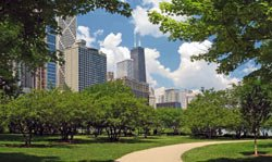 park_urban_path_city_trees_buildings.jpg